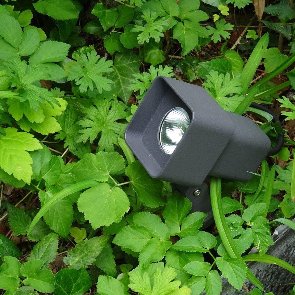 Spot Telescope Beet